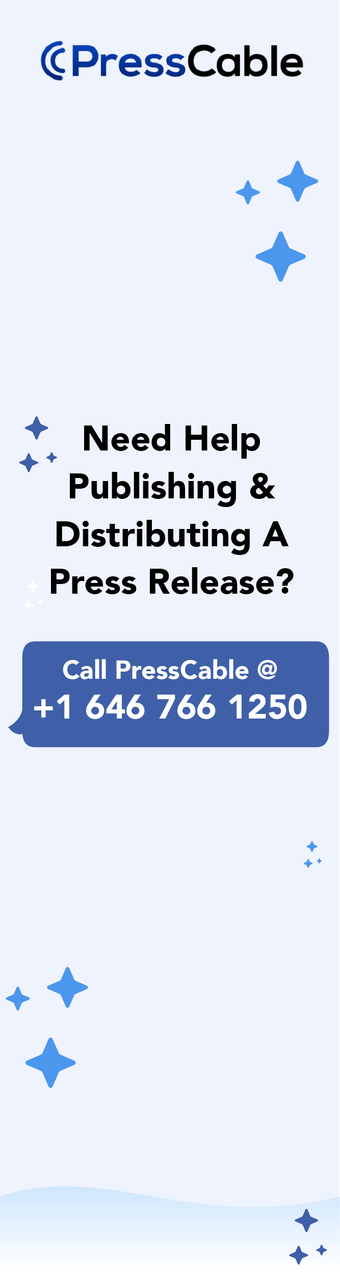 How to Write a New CEO Press Release Annoucement   (Sample
