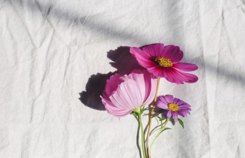 floristry press release template